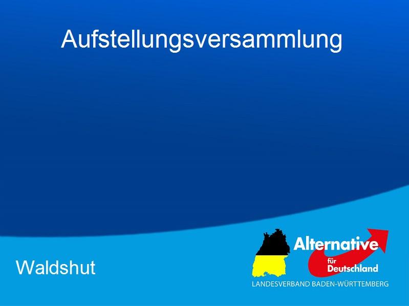 Gemeinderat Waldshut Tiengen